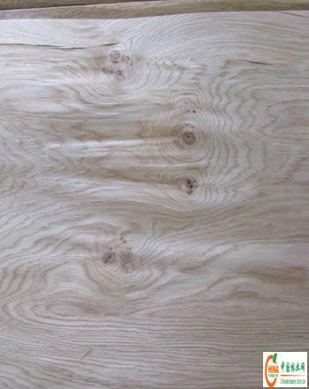 6欧橡树瘤木皮—工程木皮