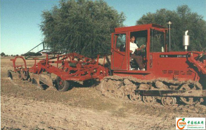 赤峰植树机械图片大全
