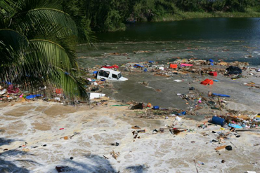 谁来支付生态赤字——印度洋大海啸的启示